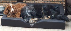 Großes, komfortables Hundebett